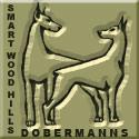 Smart Wood Hills dobermanns (Питомник доберманов Смарт Вуд Хиллз)